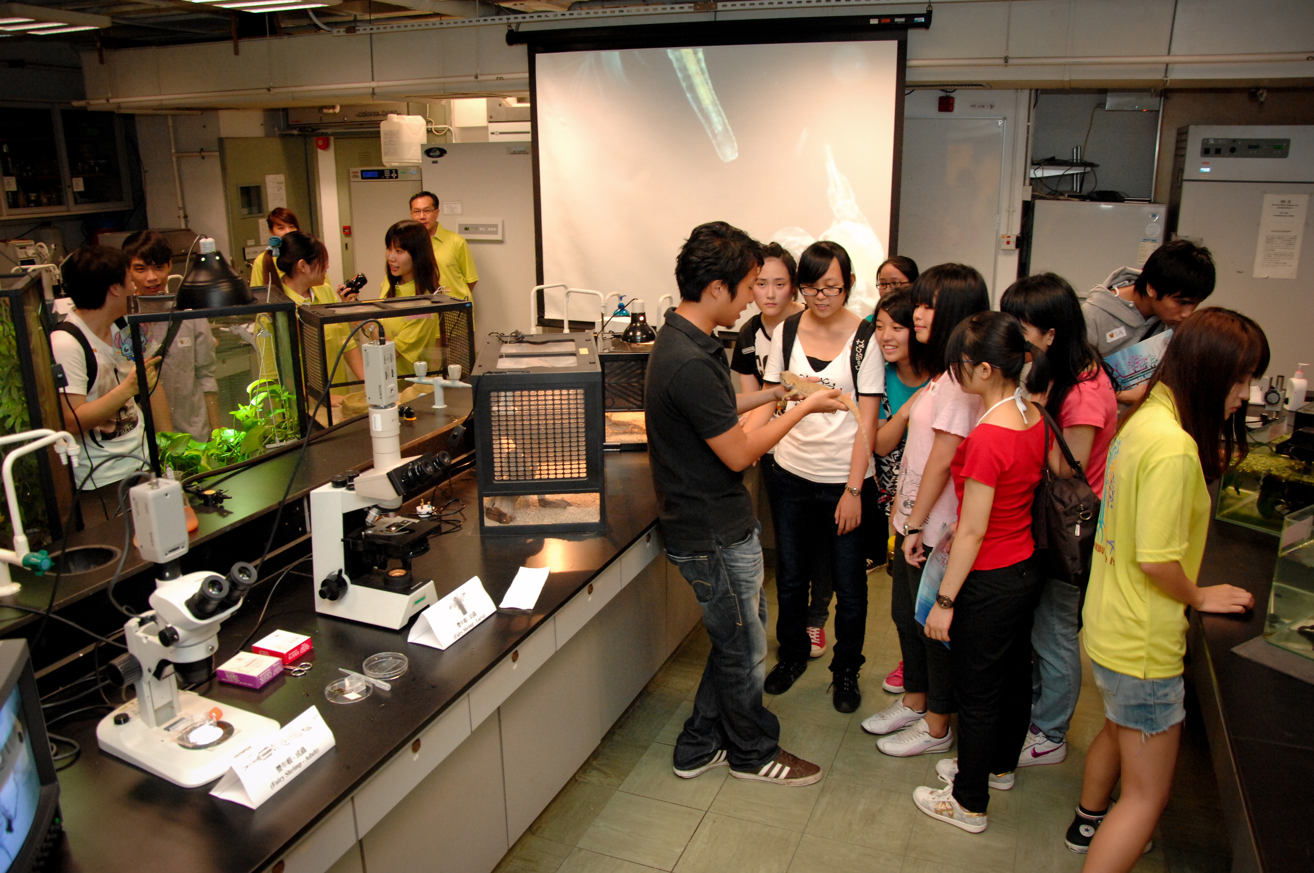Science Faculty OpenDay 2011 :: Experimental Demonstration